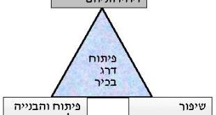 תרשים המציג את המרכיבים השונים לפיתוח דרג בכיר:
